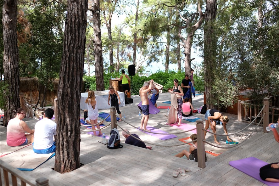 yoga alanı
