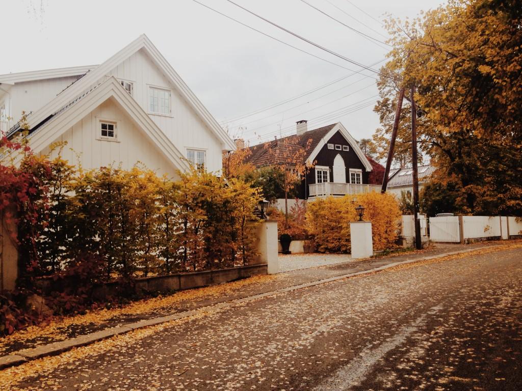 oslo-gezisi-iskandinav-evleri